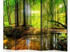 Paraván - Forest Stream II [Room Dividers]